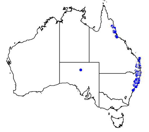 distribution map showing range of Tropidechis carinatus in Australia