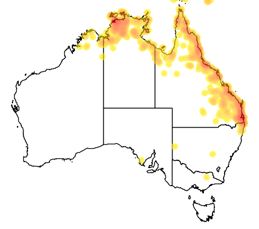 distribution map showing range of Tropidonophis mairii in Australia