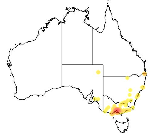 distribution map showing range of Turdus philomelos in Australia