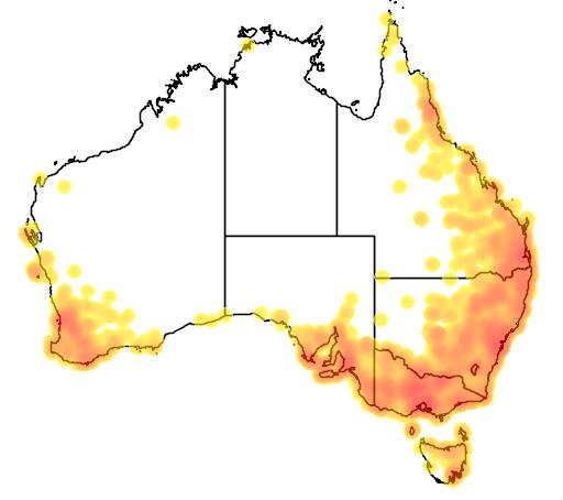 distribution map showing range of Turnix varia in Australia