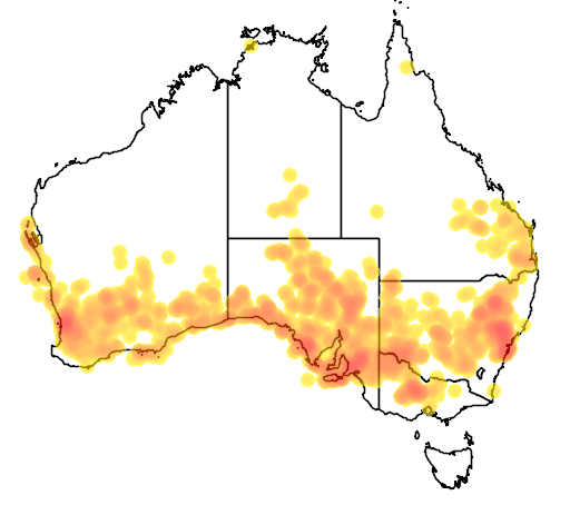 distribution map showing range of Underwoodisaurus milii in Australia