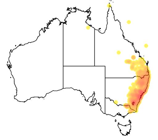 distribution map showing range of Uperoleia laevigata in Australia