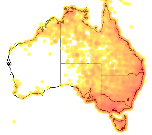distribution map showing range of Vanellus miles in Australia