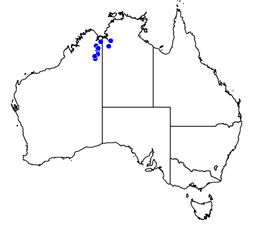 distribution map showing range of Varanus kingorum in Australia