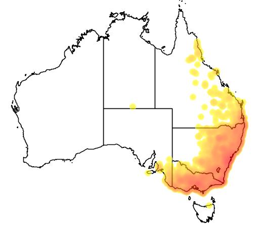 distribution map showing range of Wallabia bicolor in Australia