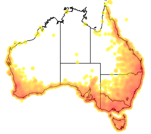 distribution map showing range of Zosterops lateralis in Australia
